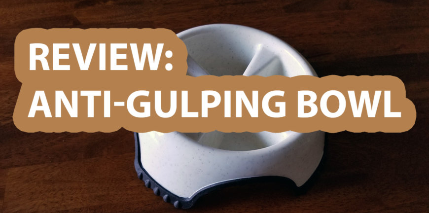 dog anti gulping bowl